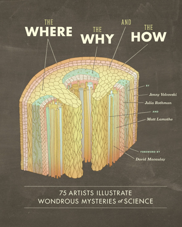 where-why-how-book