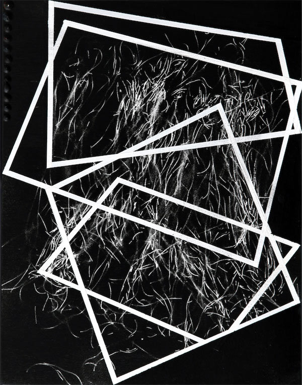 Fragments-vermicelli-high-res