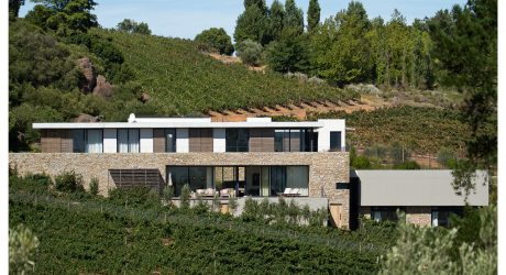 Hillside: A House Nestled Between Rolling Vineyards