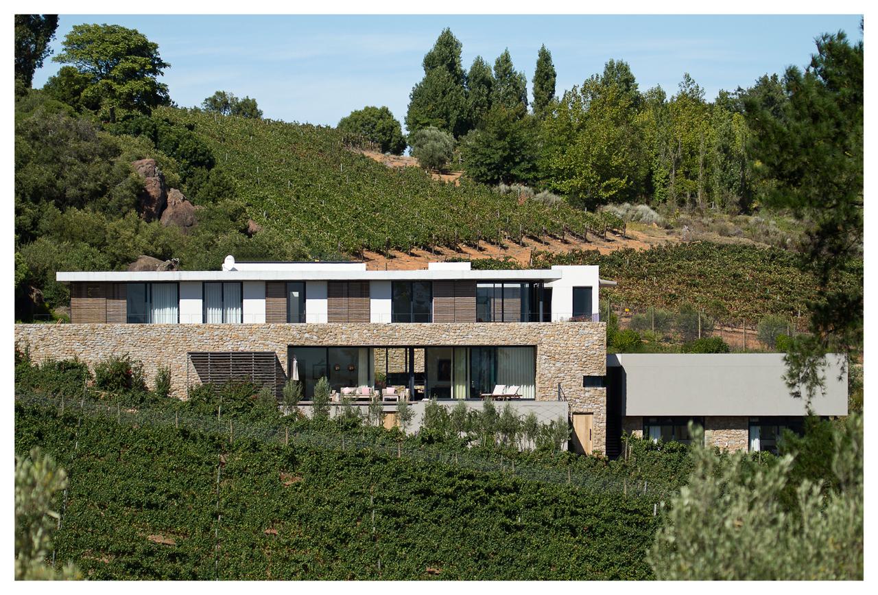 Hillside a house nestled between rolling vineyards for Hillside architecture