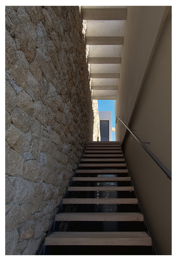 Hillside-House-GASS-Architecture-16