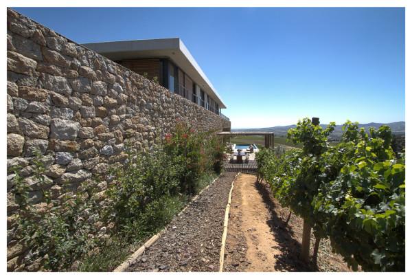 Hillside-House-GASS-Architecture-4b
