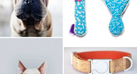 Dog Milk: Best of September 2014