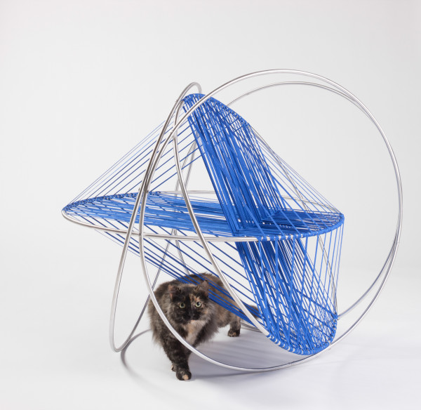 Cat's Cradle By DSH// architecture