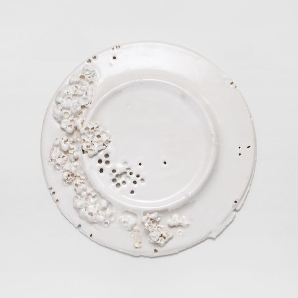 The Quid Feci? Plate (Design Souvenir)