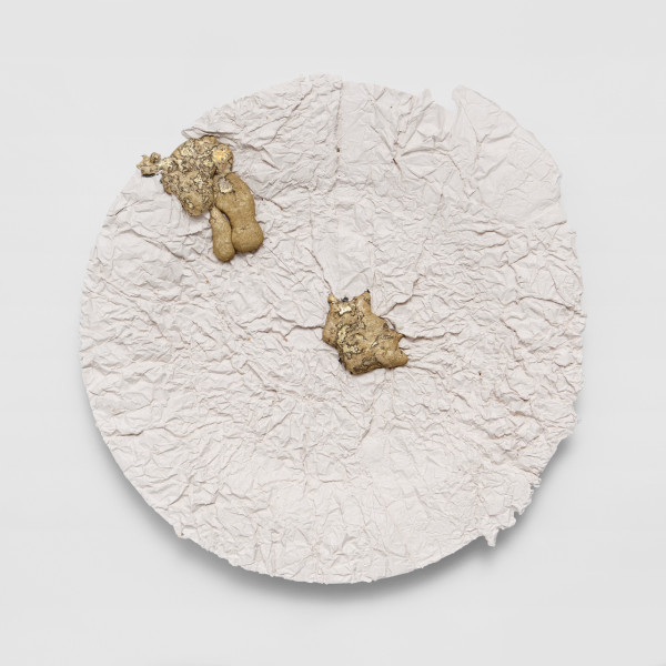 The Wrinkled Plate (Design Souvenir)