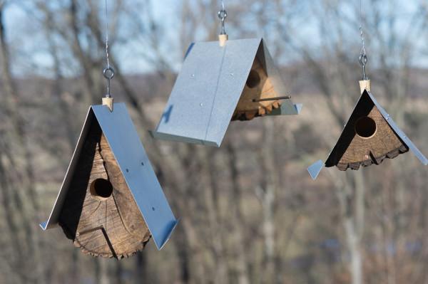 Log-Quarted-Birdhouse-Moger-Mehrhof-Architects-2