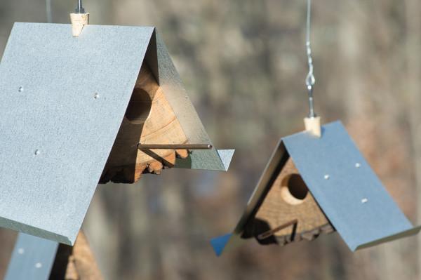 Log-Quarted-Birdhouse-Moger-Mehrhof-Architects-3