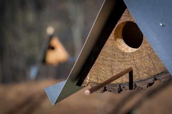 Log-Quarted-Birdhouse-Moger-Mehrhof-Architects-5