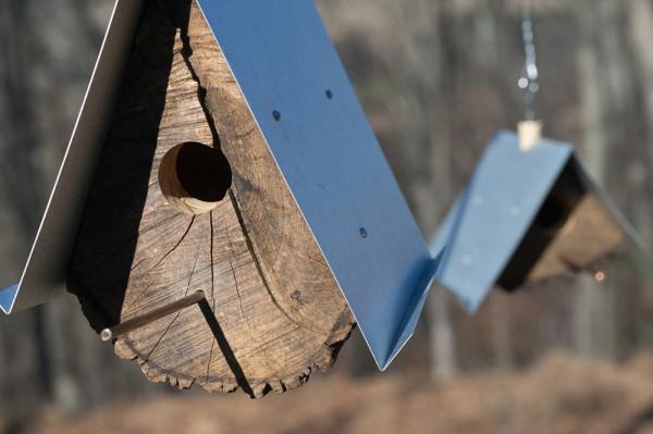 Log-Quarted-Birdhouse-Moger-Mehrhof-Architects-6