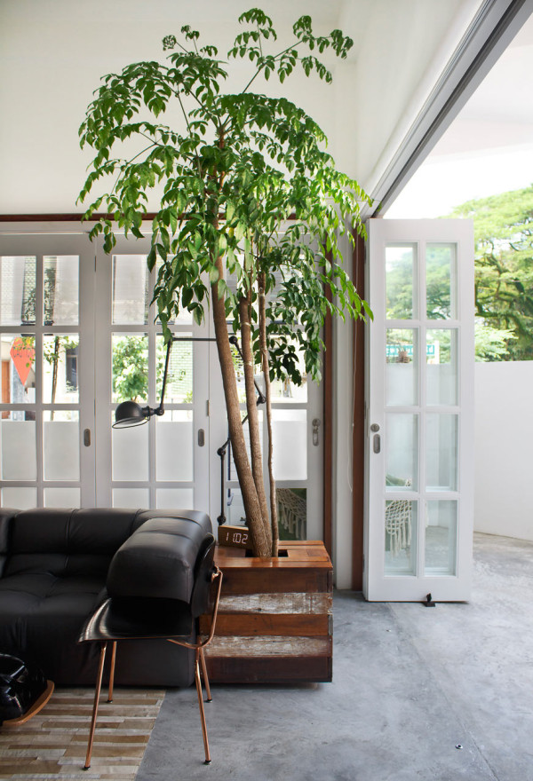 Terrace-House-Atelier-M-plus-A-6