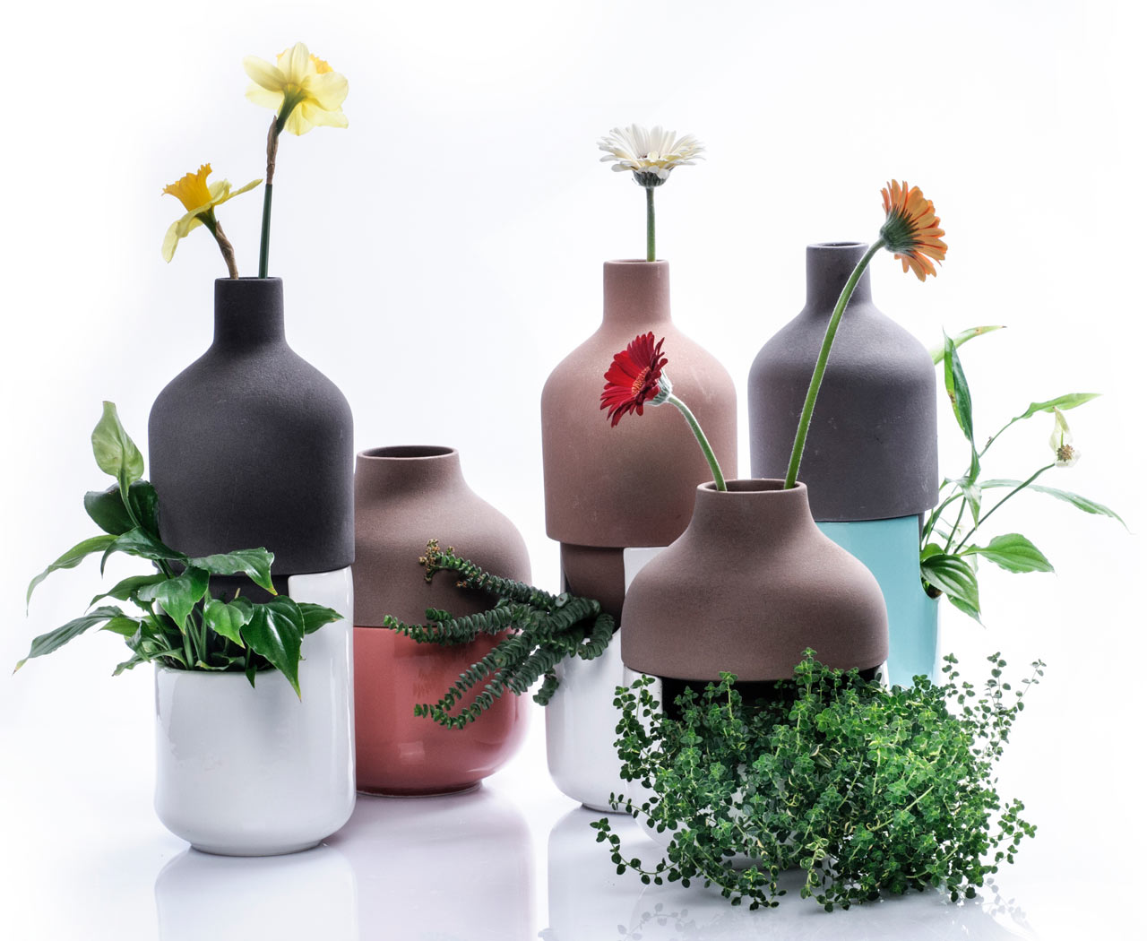 A two part vase for both leafy plants and tall flowers design milk a two part vase for both leafy plants and tall flowers reviewsmspy