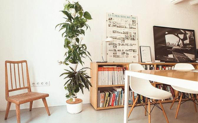 Citysens: A Modular Vertical Garden for Urban Dwellers