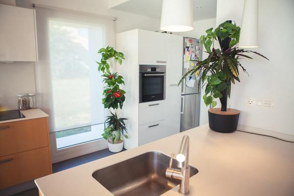 Citysens-Modular-Vertical-Garden-6