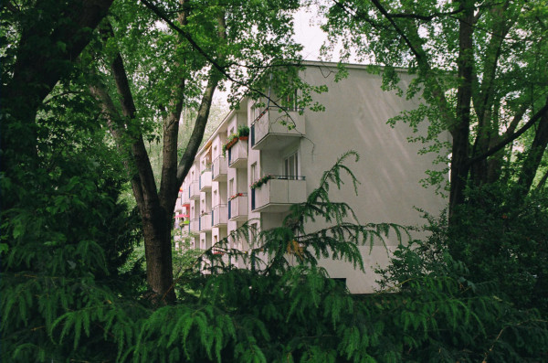 Photo of Franz Schuster building through trees by Liam