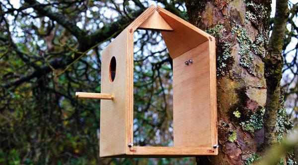 Nestbox-Birdhouse-Milk-Carton-3