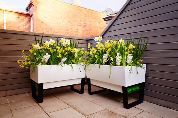 GlowPear-Urban-Garden-self-watering-planter-1