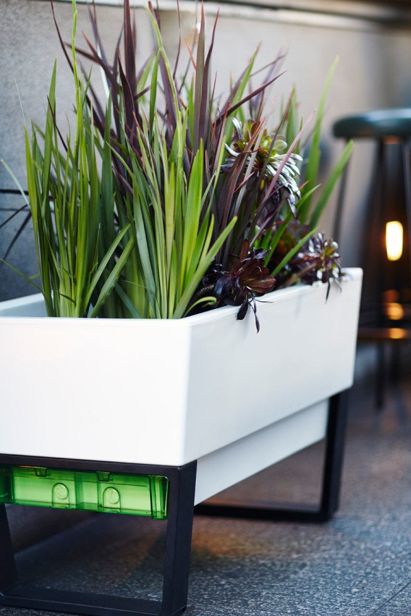 GlowPear-Urban-Garden-self-watering-planter-4