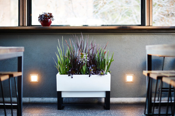 GlowPear-Urban-Garden-self-watering-planter-5
