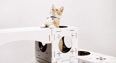 Be a Cat Playhouse Architect with BLOCKS
