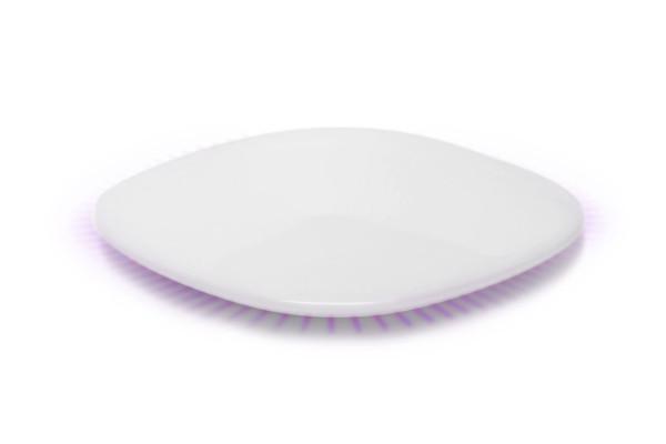 hive-hub-purple