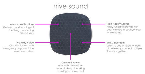 hive-sound-2