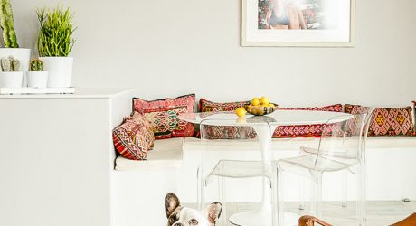 Spotted: A Frenchie's Cozy, Modern Home in SF