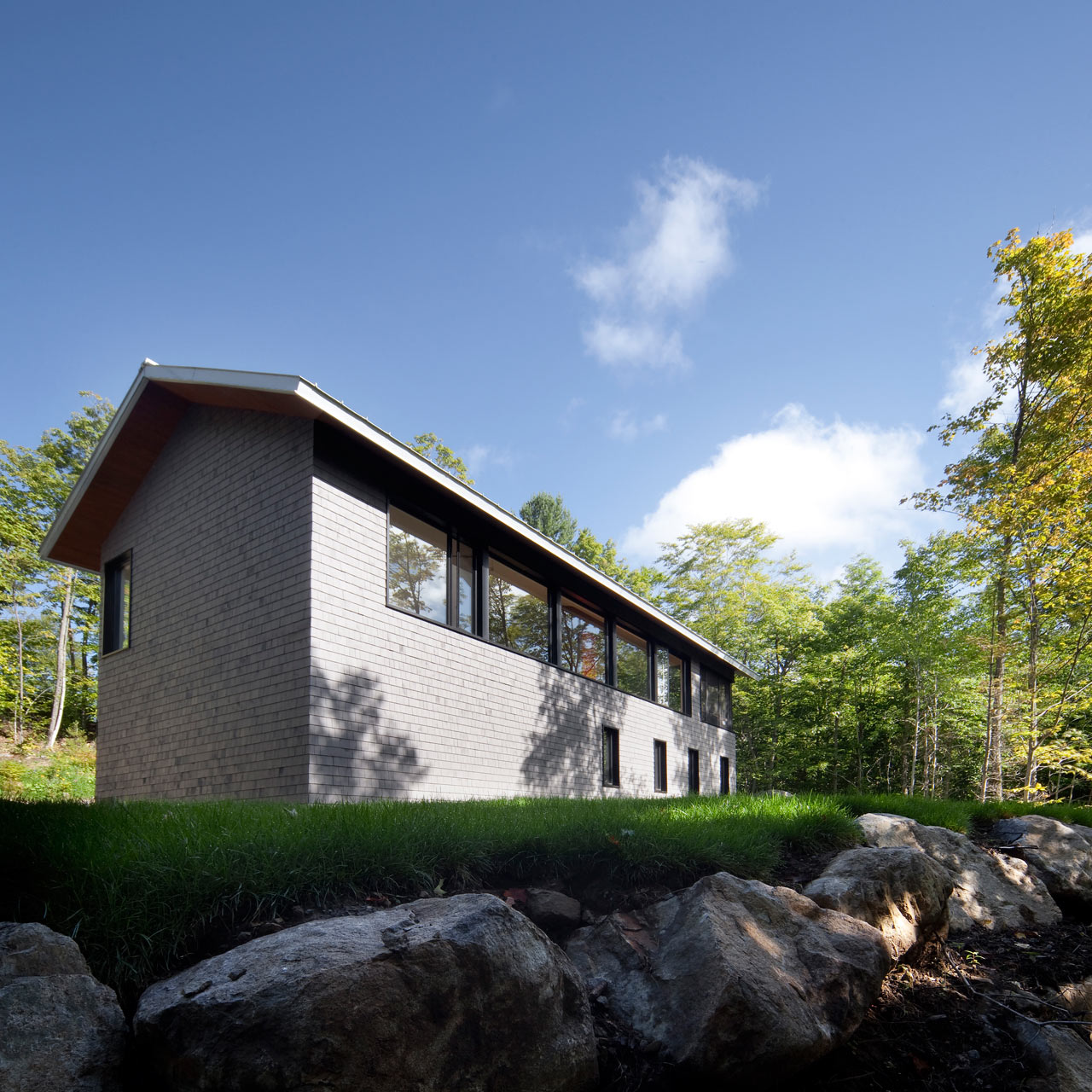 modern cottage on the edge of the forest design milk