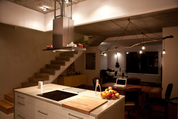 Urban-Forester-House-modelina-15