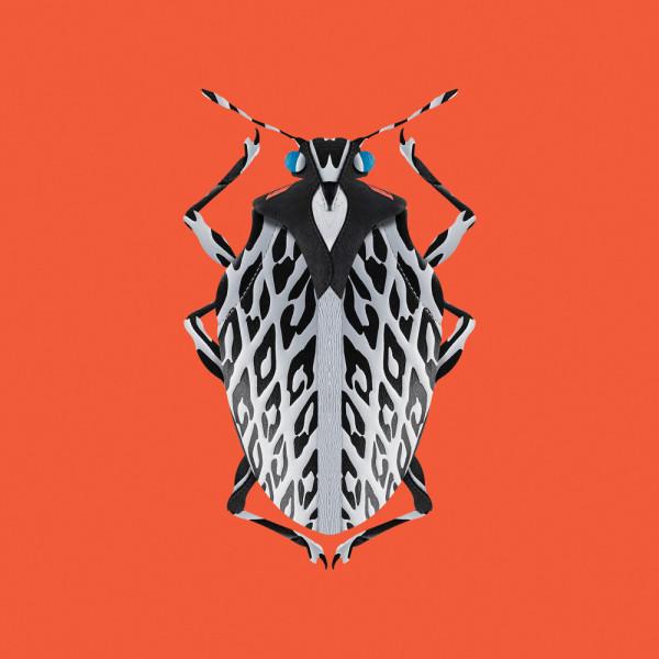 FILFURY-Bug_Square_Orange