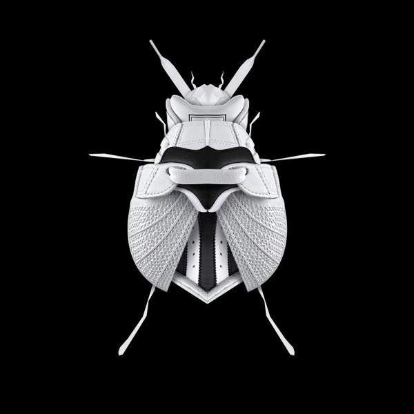 FILFURY-beetle-1000