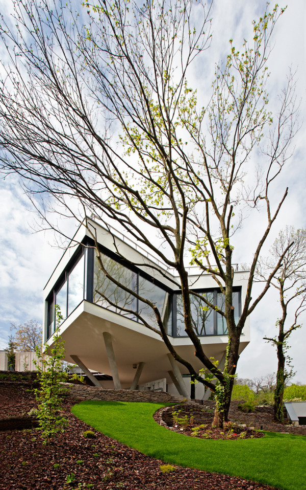 HOUSE-BETWEEN-THE-TREES-Sebo-Lichy-8