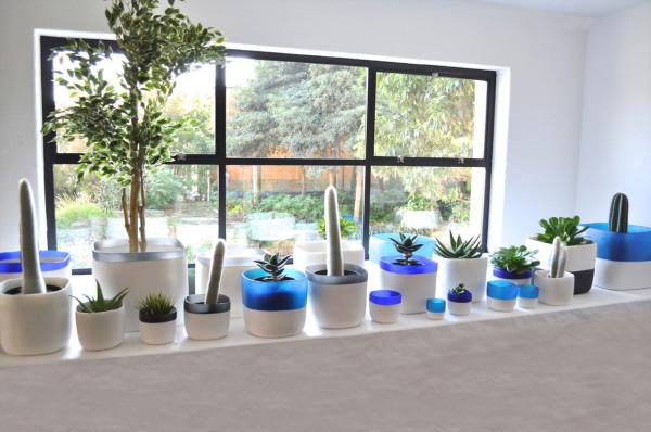 Tina-Frey-Urban-Garden-Collection-Spring-2015-4