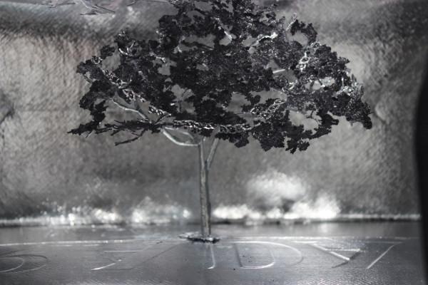 Notice Forest (Prada), (detail)