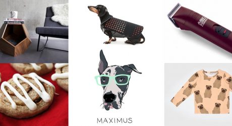 Best of Dog Milk: Feb + March 2015