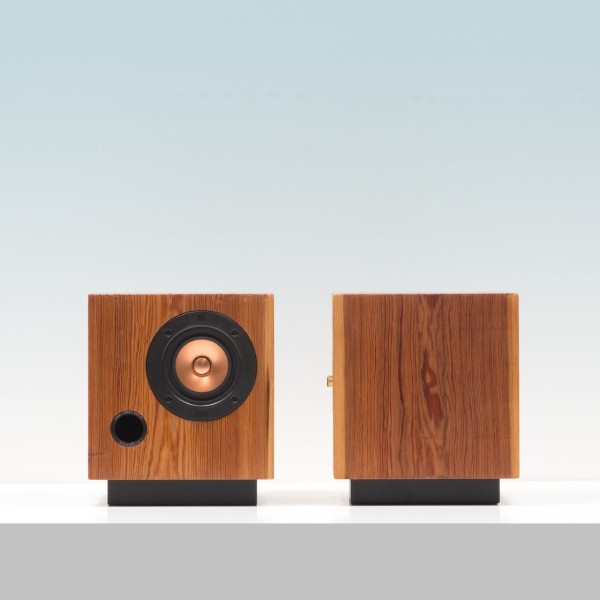 Fern_and_Roby-cubespeakers-02