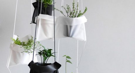 A Simple Solution for Hanging Your Plants