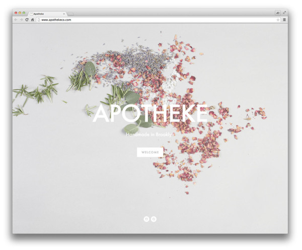 how to set up shop on squarespace