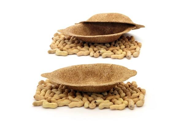 FOODSCAPE_arachide02