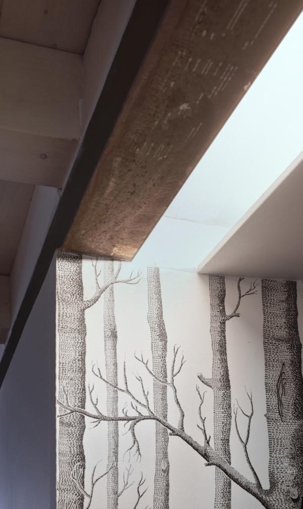 CPR-attic-refurbishment-R+Piuerre-15