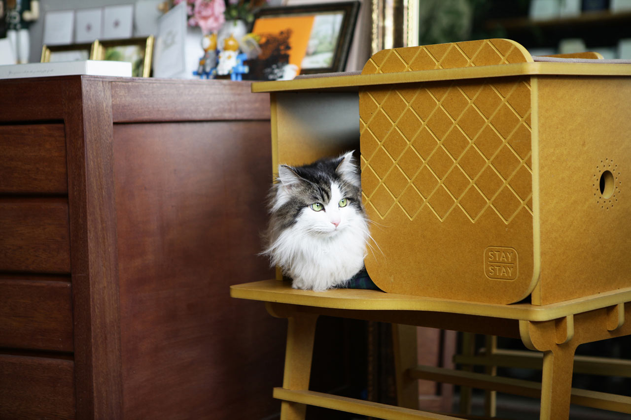 a pretty sweet pad for your cat