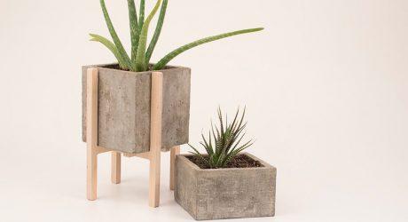 Concrescence: Modern Concrete & Wood Planters