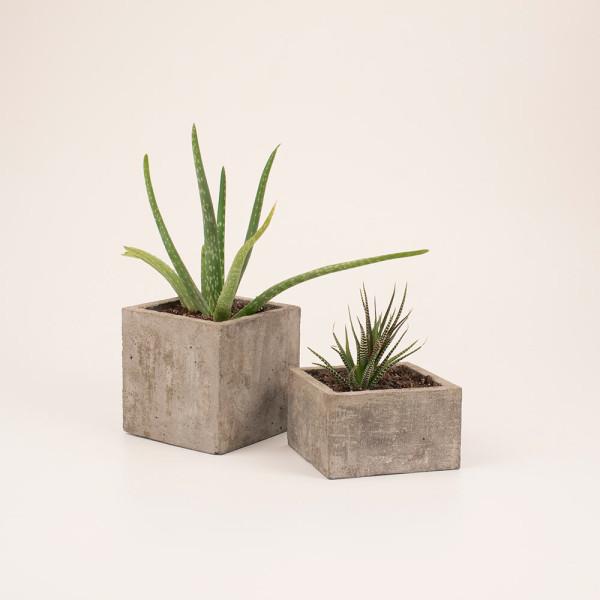 Vako_Concrescence_Concrete_Planter-6