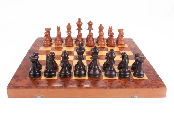 F5-Jan-van-de-Lande-Kikkerland-3-chess