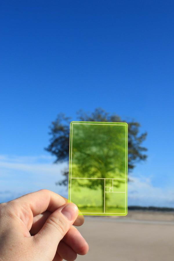 GoldenSectionFinder-FlGreen-lifestyle-ParsonsCharlesworth-PSGSFG