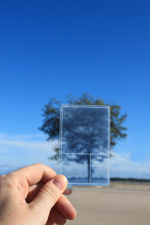 GoldenSectionFinder-blue-lifestyle-ParsonsCharlesworth-PCGSFB