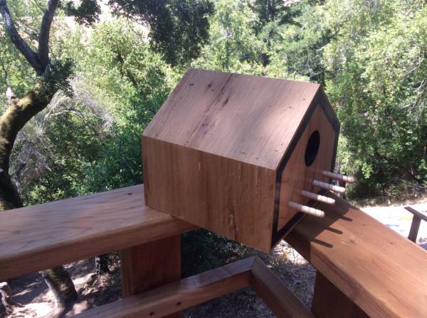 Sourgrass-Mid-Century-Bird-Houses-7