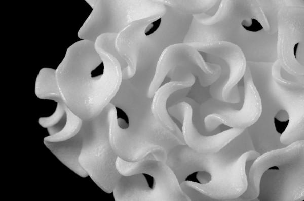 nervous-system-actinaPendant_detail