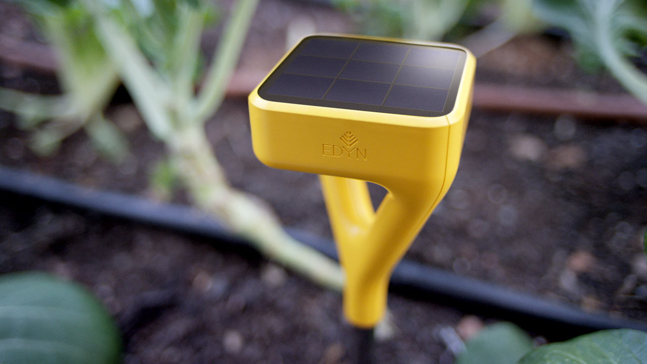 The Edyn Sensor Keeps You Connected to Your Garden