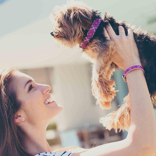 FriendshipCollar_matching_dog_collar_bracelet_01